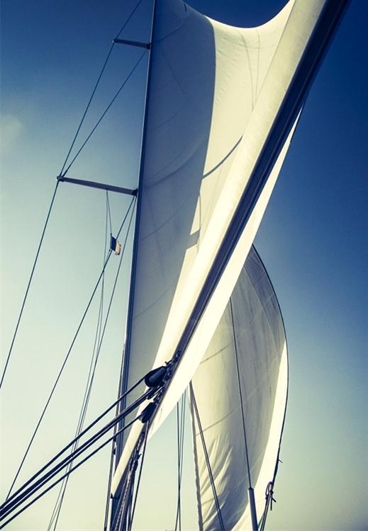 successful sailing tours company - 5