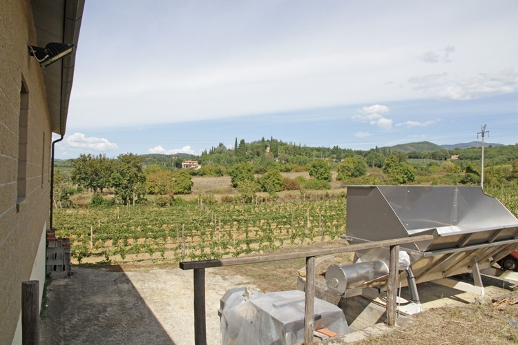 winery tuscany for sale - 5